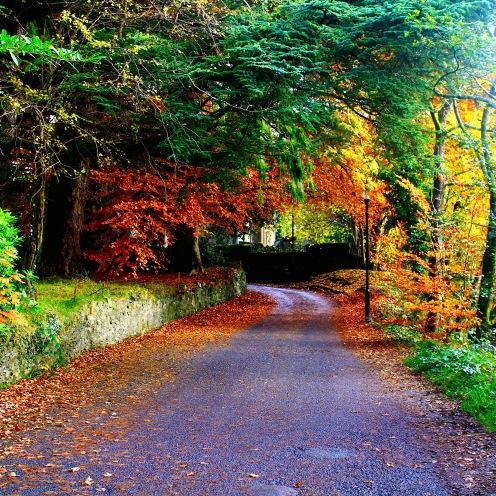 Colourful roadtrip