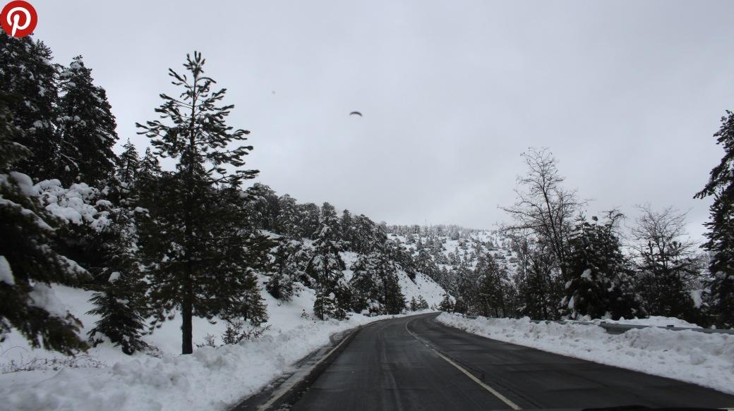 IMG_8671 snow